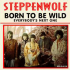 Steppenwolf: dal Lupo della Steppa all'Heavy Metal